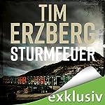 Sturmfeuer (Hell-Go-Land 2) | Tim Erzberg