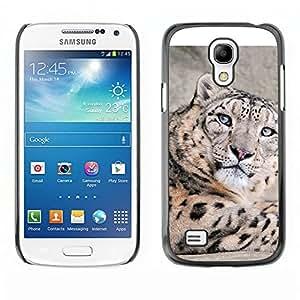 Caucho caso de Shell duro de la cubierta de accesorios de protección BY RAYDREAMMM - Samsung Galaxy S4 Mini i9190 - Leopardo de nieve
