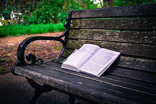 Home Comforts Peel-n-Stick Poster of Bible Park Bench Book Outdoor South Carolina Sc Vivid Imagery Poster 24 x 16 Adhesive Sticker Poster Print
