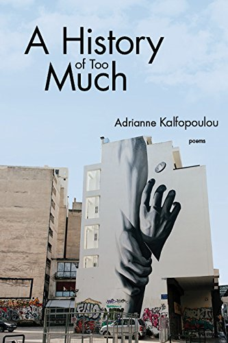 Download A History of Too Much ebook