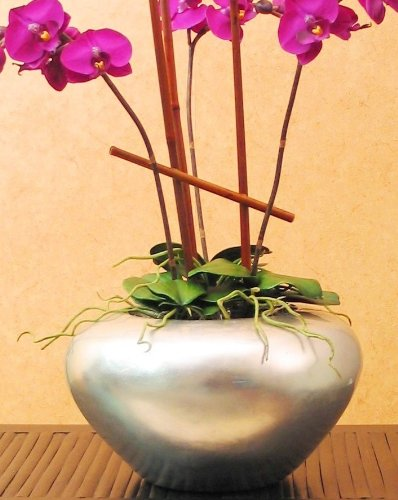 Amazon 12 In Silver Leaf Orchid Vase Home Kitchen