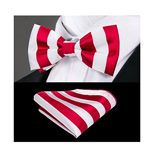 (Dubulle Mens Striped Red Bow Tie with Handkerchief Handmade Pre Tied Bowties)