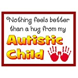 Autism Awareness Magnet (Nothing Feel Better Than a Hug...)