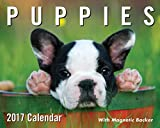 Puppies 2017 Mini Day-to-Day Calendar