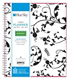 Blue Sky 2017 Monthly Planner, Wire-O Binding, 8' x 10', Analeis (19570)