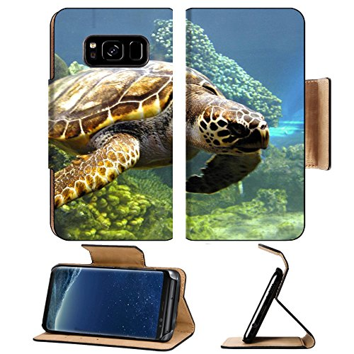MSD Premium Samsung Galaxy S8 Flip Pu Leather Wallet Case IMAGE of sea ocean turtle underwater water reef animal tropical nature marine coral dive blue fish green