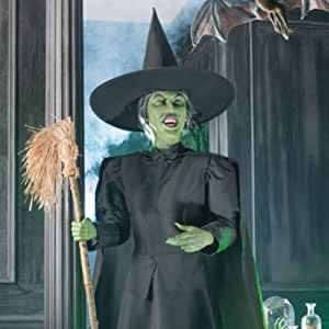 Amazon Com Collectors Wizard Of Oz Wicked Witch Of The