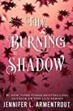 The Burning Shadow (Origin Series Book 2)