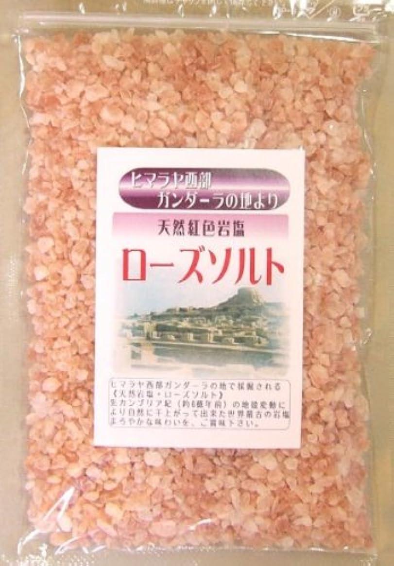 コントローラ嘆く官僚伯方の塩 1kg