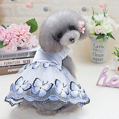 LAIHUI Spring Summer Print Pet Dog Cat Dress Tutu Party Dress pet Clothes Butterfly Dog Harness Dress Vest Shirts Sundress Fashion Princess Suitable for Large Medium and Small Pets (XS, Blue)