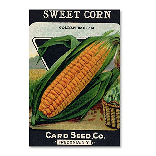 CafePress - Yellow Corn Antique Seed - Postcards (Package of 8), 6