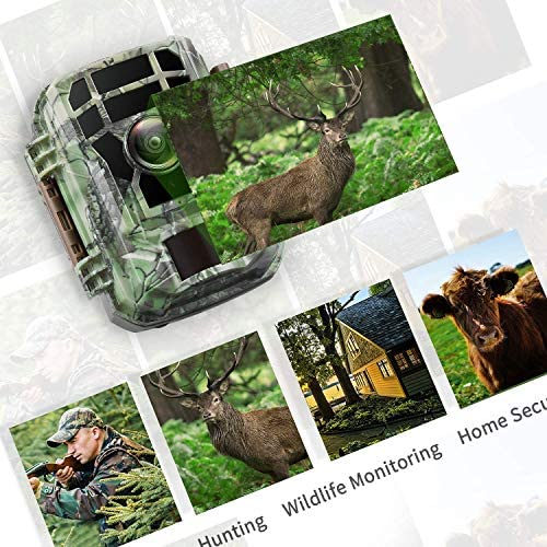 "【2020 Upgrade】 Campark Mini Trail Camera 16MP 1080P HD Game Camera Waterproof Wildlife Scouting Hunting Cam with 120° Wide Angle Lens and Night Vision 2.0"" LCD IR LEDs 51E5 2BpVWgzL"