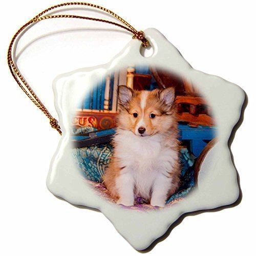 stmas Ornaments Shetland Sheepdog Puppy Sitting By Small Wooden Wagon Mr Christmas Ornament (3 Assorted Sitting Dogs)