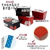 bento box accesories - Hakoben 2 Tier Bento Box w/ Refrigerant & Elastic Band (Black)