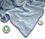Zoog Organic Cotton Toddler Blanket Natural Dye Premium Quality GOTS Certified Non-Chemical Non-Toxic 100% Organic Cotton Soft Knitted 31' x 40' Baby Blue (Blue)