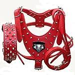 haoyueer Medium & Large Dog Leather Spiked Studded Dog Harness,Collar & Leash 3Pcs Set for Pit Bull,Mastiff, Boxer, Bull Terrier 25