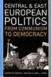 Central and East European Politics, Sharon L. Wolchik and Jane Leftwich Curry, 0742540677