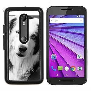 Border Collie Negro Perro Raza Blanca- Metal de aluminio y de plástico duro Caja del teléfono - Negro - Motorola Moto G (3rd gen) / G3