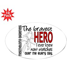 CafePress - Bravest Hero I Knew Mesothelioma Sticker (Oval 10 - Oval Sticker (10-pack), Bumper Sticker, Car Decal, Euro Oval