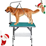 Free Paws Heavy Duty Stainless Steel Pet Rubber Surface Grooming Table with Arm and Noose