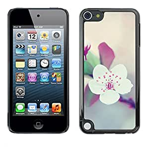 Planetar® ( Apple Blossom Tree Spring Floral Purple ) Apple iPod Touch 5 Fundas Cover Cubre Hard Case Cover