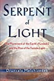 img - for Serpent of Light: Beyond 2012 - The Movement of the Earth's Kundalini and the Rise of the Female Light, 1949 to 2013 book / textbook / text book