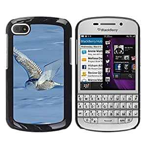 Print Motif Coque de protection Case Cover // F00002064 al aire libre // BlackBerry Q10