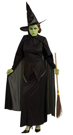 a289f34abd4 Wicked Witch of the West Costume - Standard - Dress Size 10-12