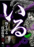 Special Interest - Iru. Kowasugiru Toko Eizo 13 Bon Vol.2 [Japan DVD] TOK-D0008