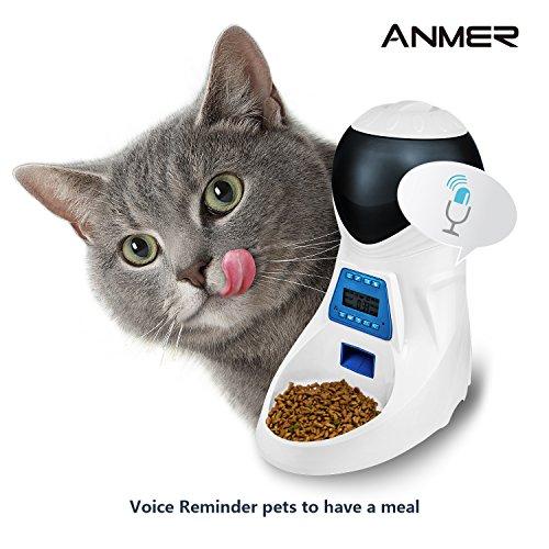 from food cardboard puppy diy dog cat youtube hqdefault dispenser feeder watch