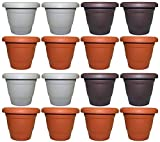 Set of 16 Black Duck Brand Plastic Multi Color 6″ Round Flower Planter/Pot (16, 6″ Round) Review