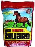 Horse Guard Equine Vitamin Mineral Supplement