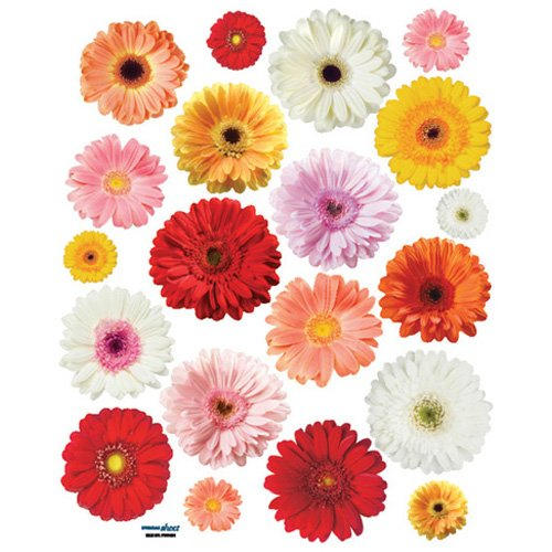 Price comparison product image Reusable Decoration Wall Sticker Decal - Blooming Button Bonanza