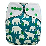 HappyEndings Bamboo Charcoal Contoured AI2 All-In-Two Cloth Diaper / Snap-in Insert  Bugs