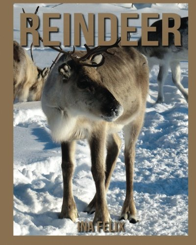 (Reindeer: Children Book of Fun Facts & Amazing Photos on Animals in Nature - A Wonderful Reindeer Book for Kids aged 3-7)