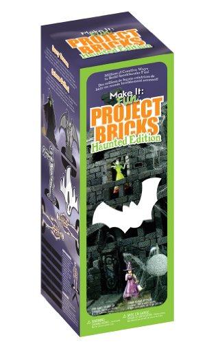 FloraCraft Styrofoam Kits, Haunted Project Bricks Black]()