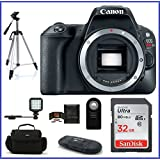 Canon EOS Rebel SL2 DSLR Camera (Body) Black Bundle: Includes: 32GB SDHC Class 10 Memory Card + Tripod + LED Light + more ...