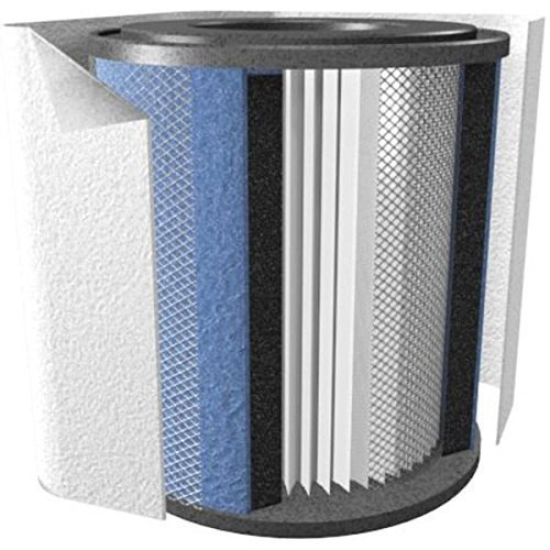 Air Machine Junior (Austin Air Healthmate Jr Replacement Filter w/Prefilter (White))