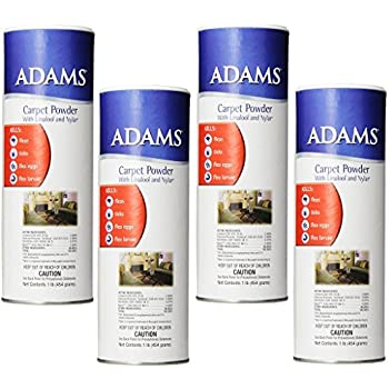 Amazon Com 4 Pack Adams 12 Ounce Flea And Tick Carpet