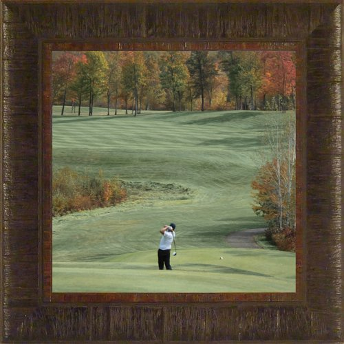 A Shot of Color By Todd Thunstedt 17.5x17.5 Sports Golf Swing Club Cart Electric Gas Hole In One Eagle Bogey Shoes Shirt Pants Lawnmower Washer Marker Tee Box Scorecard National Georgia Players Gary U.S. Open Framed Art Print Wall Décor Picture