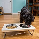 Easyology-Stainless-Steel-Elevated-Feeder-Bowls-for-Cats-Small-Dogs