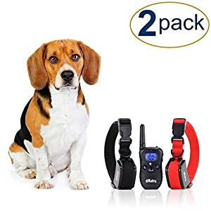 eXuby 2X Shock Collar for Small Dogs w/ 1 Remote & Training Dog Clicker - 3 Modes (Sound, Vibration & Shock) with Rechargeable Batteries - Fast Results 18