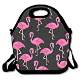 Best Picnic Plus Lunch Boxes - Flamingo Lunch Bags Insulated Travel Picnic Lunchbox Tote Review