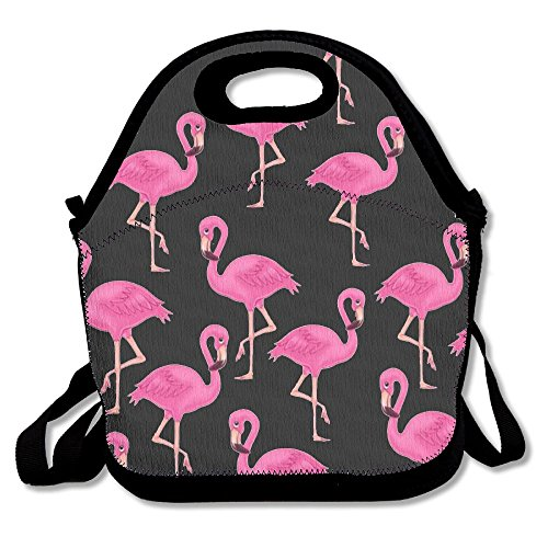 Flamingo Lunch Bags Insulated Travel Picnic Lunchbox Tote Ha