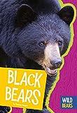 Search : Black Bears (Wild Bears)