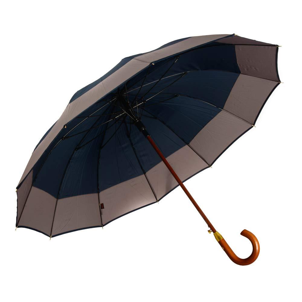 AP - Automatik Regenschirm für Damen und Herren - eleganter Stockschirm aus Holz - 12 fache Verstrebung aus Carbon Fiber - groß, stabil & windresistent - 115cm Durchmesser (Auberginenviolett)