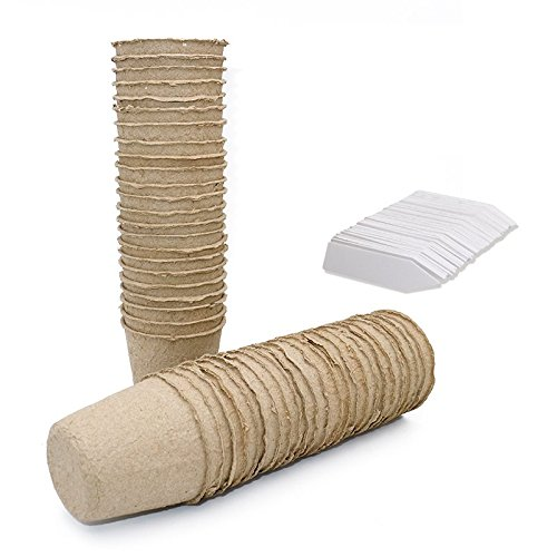 KINGLAKE 100pz 6cm Round Seed Seedling vasi biodegradabili e 100pezzi piccoli etichette per piante vasi in fibra plastica 1x 5cm JH
