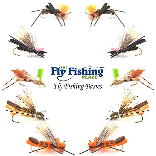 The Fly Fishing Place Basics Collection - Foam Hoppers Dry Fly Assortment #2-10 Dry Fishing Grasshopper Flies - 5 Patterns - Hook Size 10 - Hopper Dry Fly