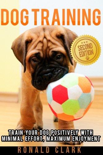Dog Training: Train Your Dog Positively With Minimal Effort