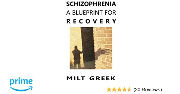Amazon schizophrenia a blueprint for recovery 9781470147730 amazon schizophrenia a blueprint for recovery 9781470147730 milt greek books malvernweather Choice Image
